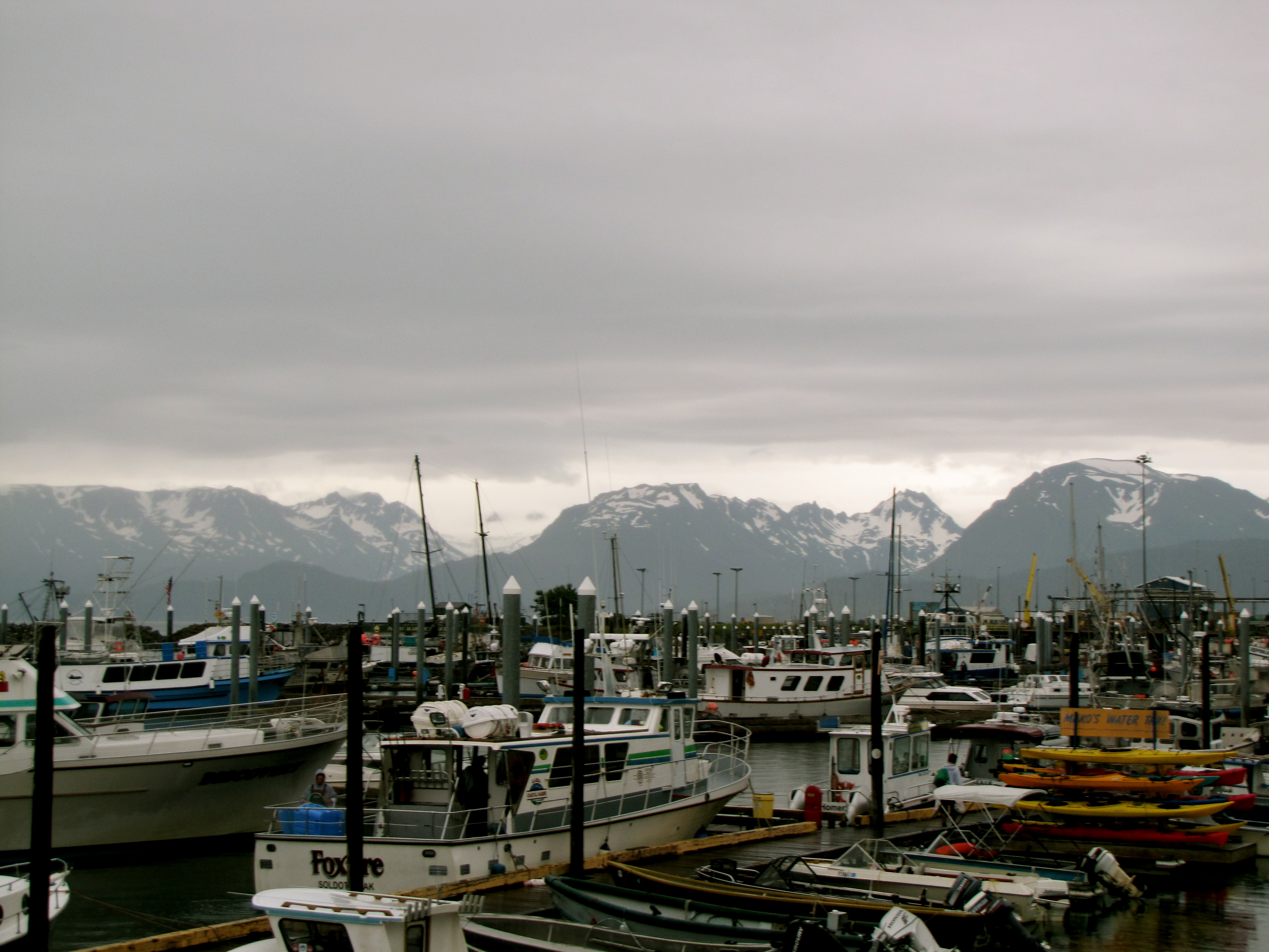 Homer Harbor and Mountains