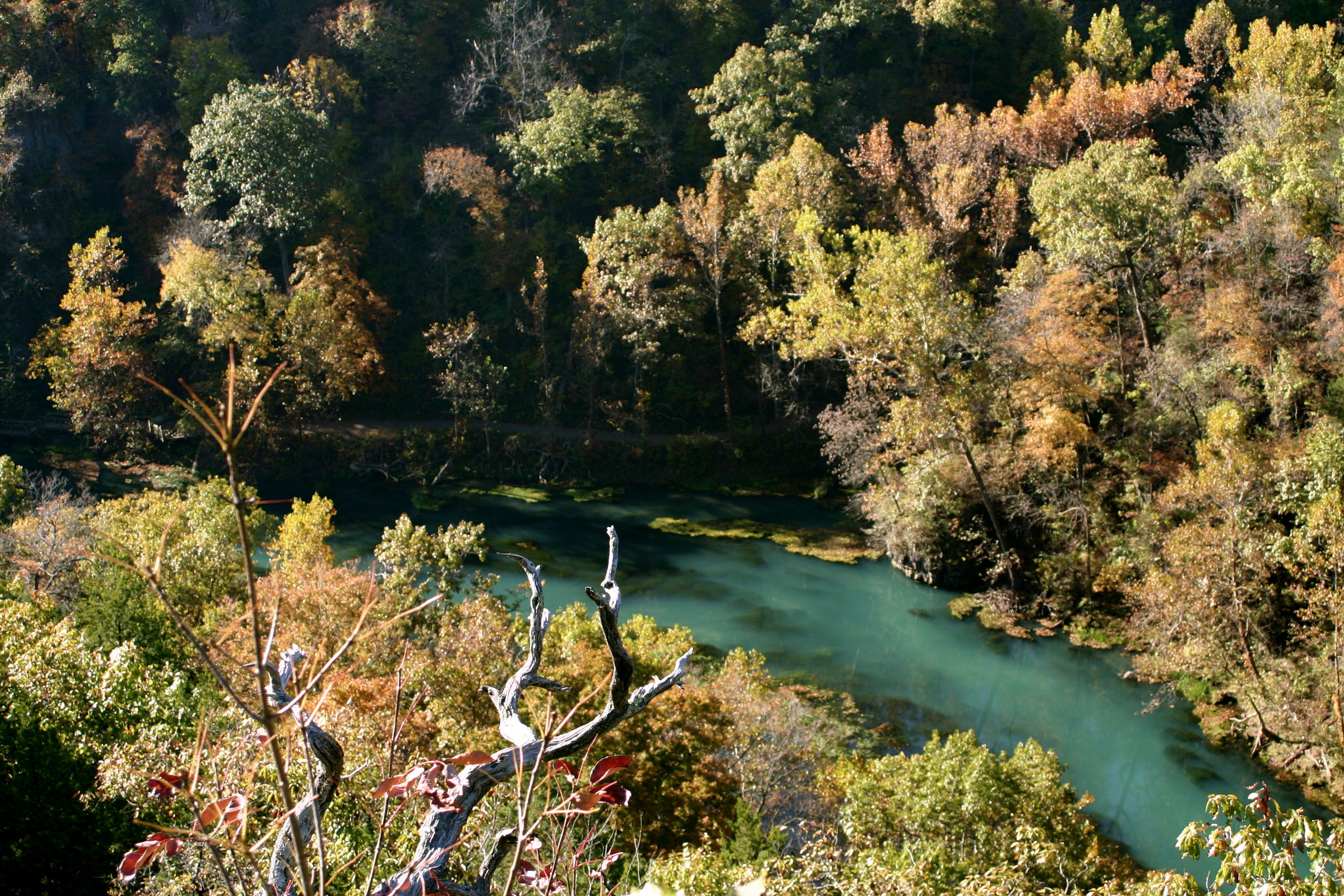 A View of Ha Ha Tonka Spring from the Castle Lookout