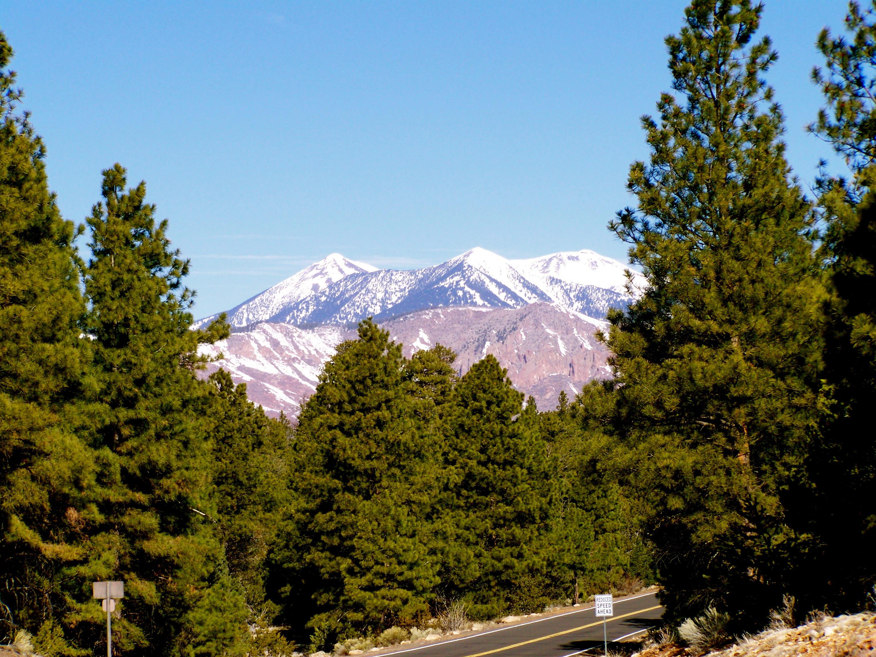 The San Francisco Mountains from Flagstaff