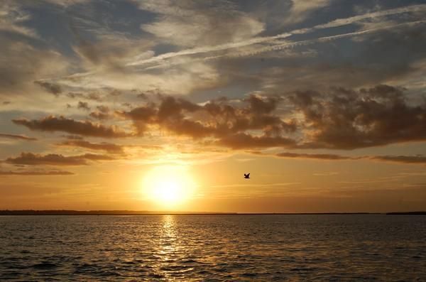 atlantic_beach_northcarolina