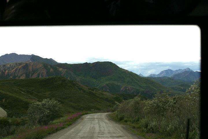 Road to WanderlustDenali