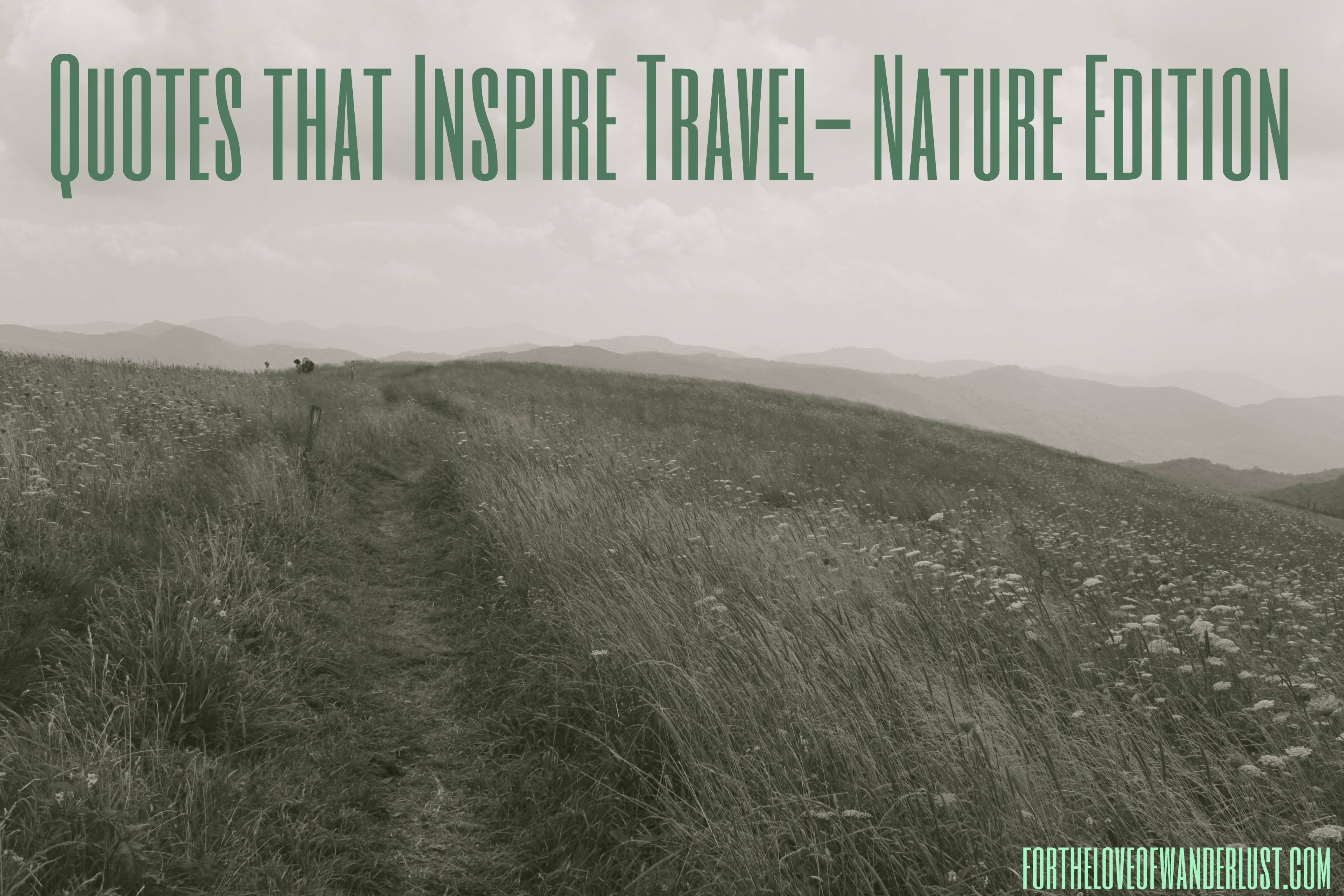 Quotes Nature Quotes That Inspire Travel Part 28 Nature Edition  For The