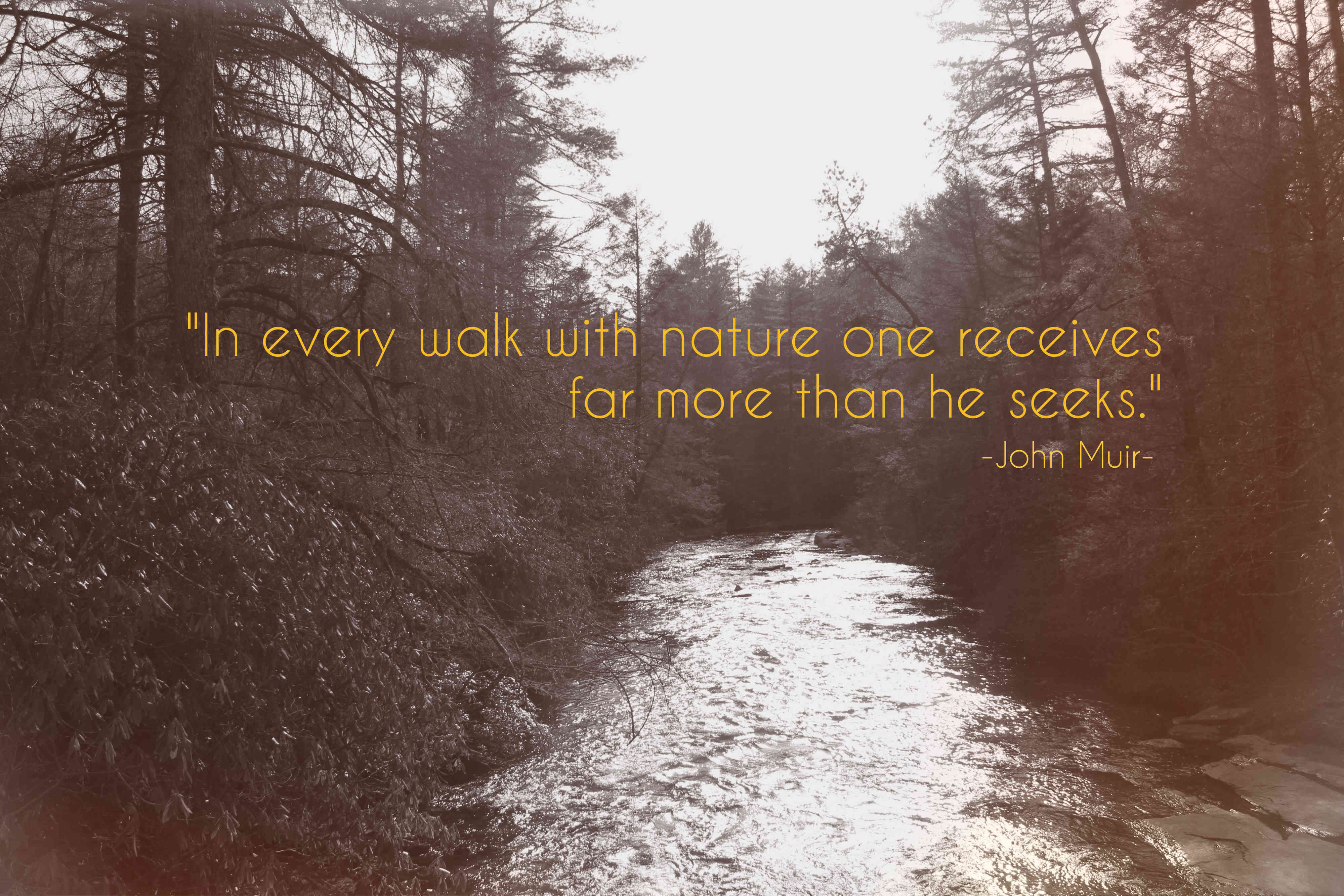 John Muir Arrow What Are Your Favorite Travel Quotes