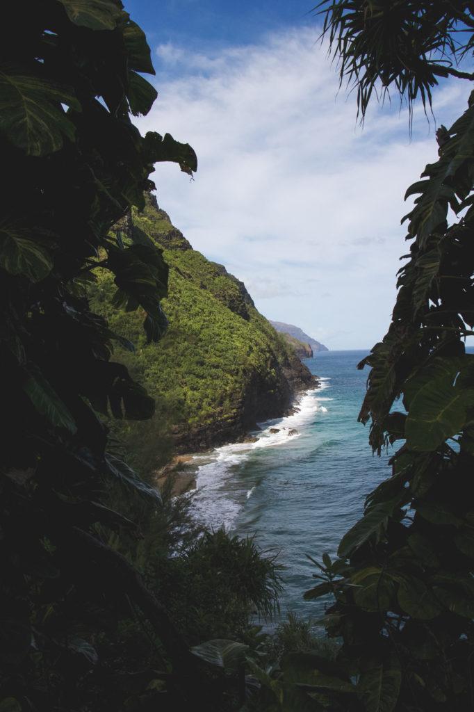 hanakapiai-falls-trail-14-of-37