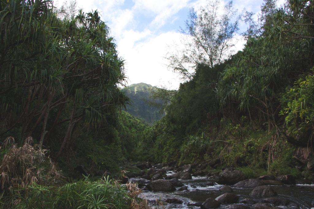 hanakapiai-falls-trail-15-of-37