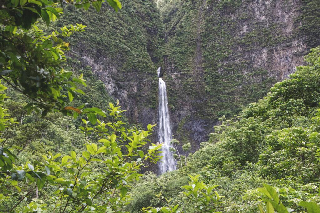 hanakapiai-falls-trail-30-of-37