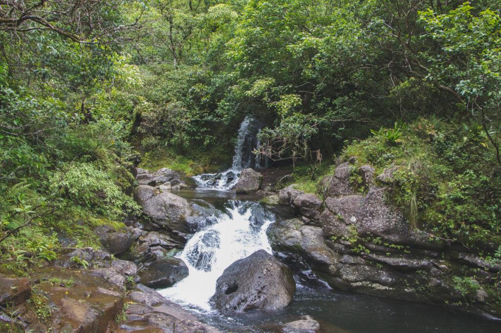hanakapiai-falls-trail-34-of-37