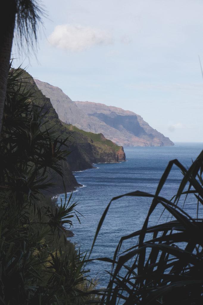 hanakapiai-falls-trail-6-of-37