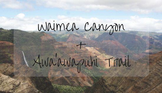 waimea-canyon-awaawapuhi-trail-2