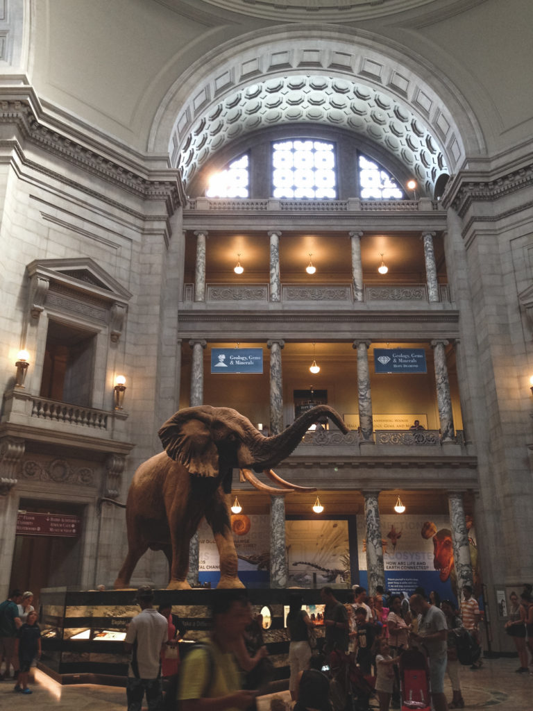 dc-museums-10-of-94