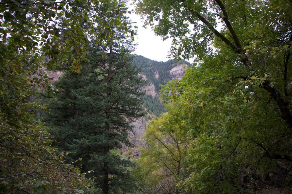 hanging-lake-trail-5-of-24