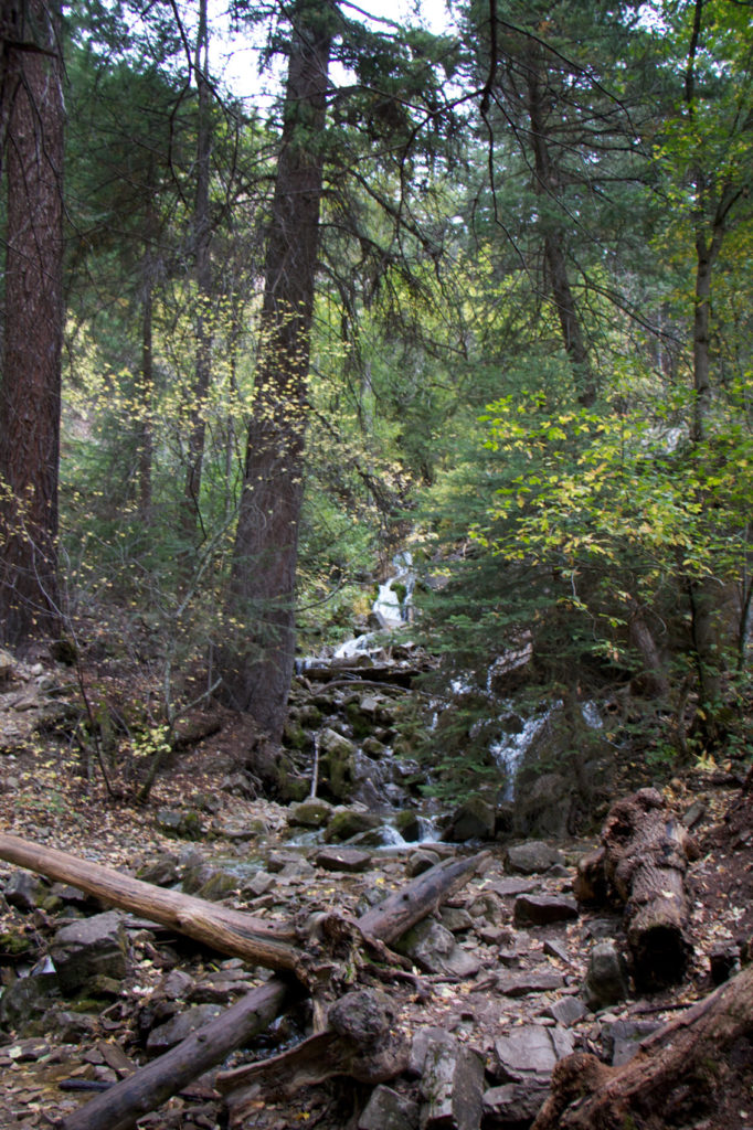 hanging-lake-trail-8-of-24