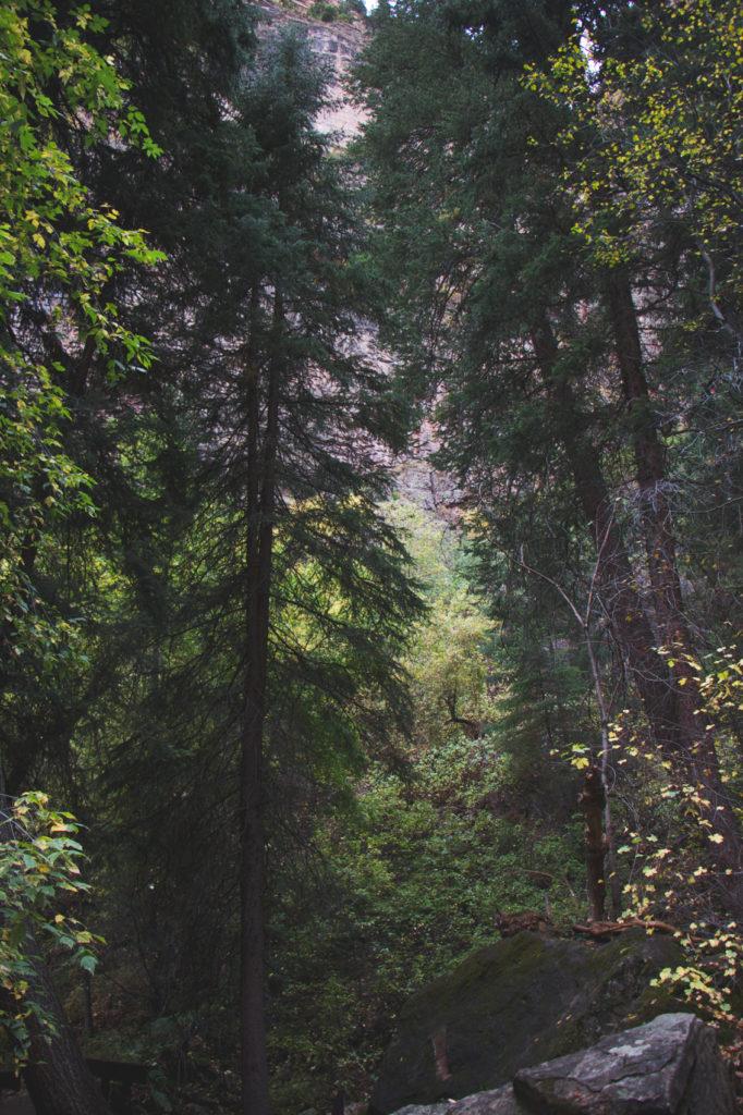 hanging-lake-trail-9-of-24
